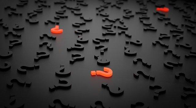 DIE WEIDE - WAS IST BESSER, SCHNELL ODER LANG?