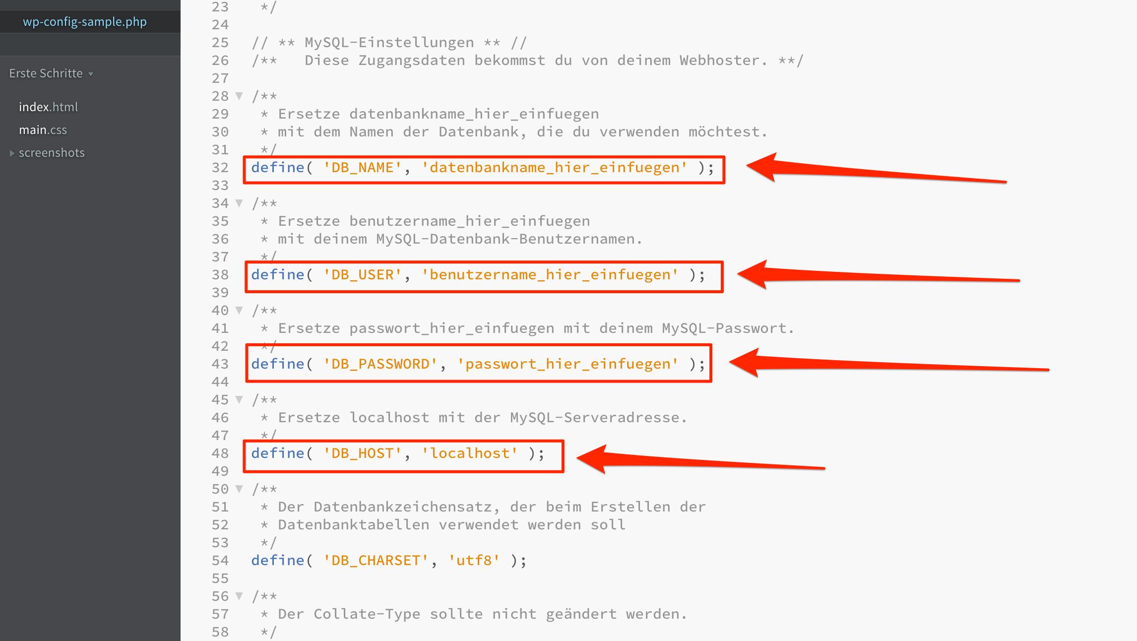 Webseite installieren - WELCHEN WEG WÄHLST DU?
